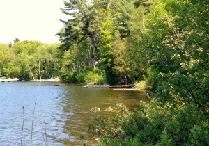 Inland lake in Benzie County great for fishing