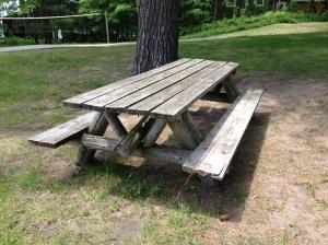 Picnic table Taylor Park Traverse City Michigan