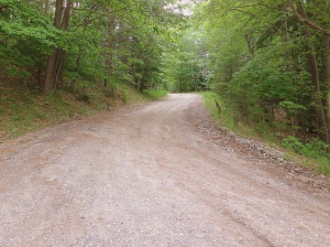 Road to public boat launch in Benzie County Michigan