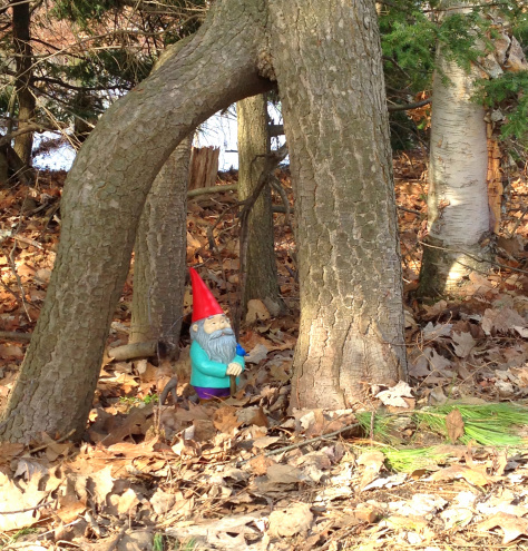 Gnome on Spider Lake in Grand Traverse County
